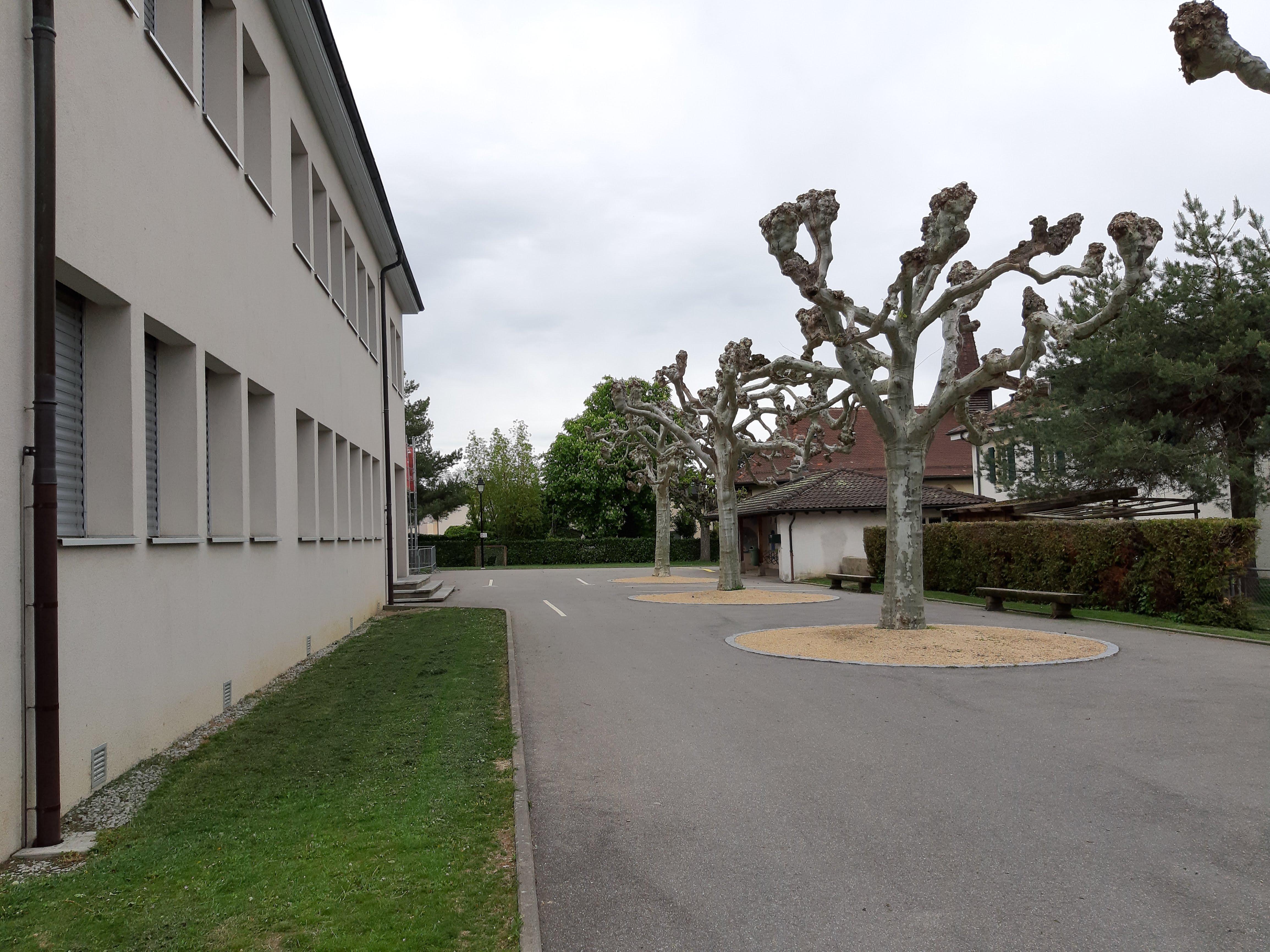 Câblage à l'école de Tolochenaz